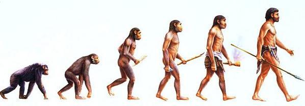 Evolução da espécie humana.
